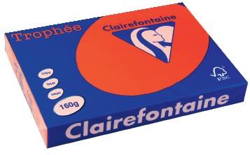 Clairefontaine Gekleurd papier Trophée Intens A3